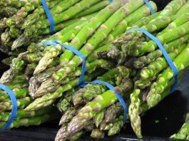 Asparagus_Season_The_Gay_Guide_Network