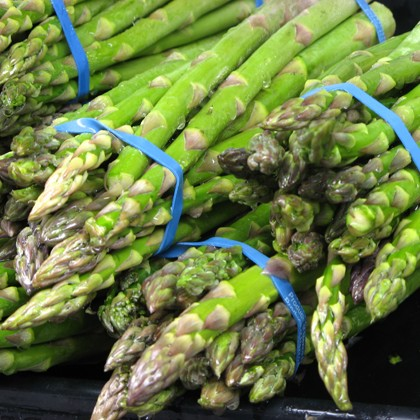 Asparagus_Season_The_Gay_Guide_Network