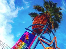The-Gay-Guide-Network-Palm-Springs-Pride